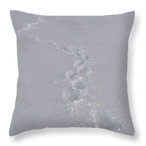 Snow Throw Pillow featuring the photograph Footsteps In The Snow by Pavel Jankasek