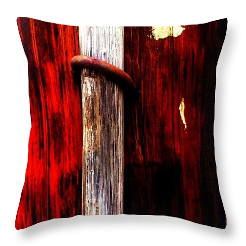 Pole Throw Pillow featuring the photograph Untitled by Barbara Ruano