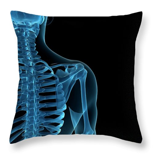 Anatomy Throw Pillow featuring the digital art Upper Body Bones, Artwork by Sciepro
