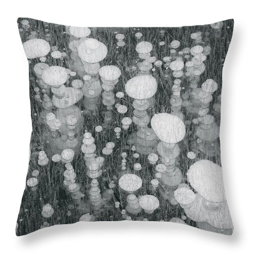 Nature Throw Pillow featuring the photograph Bubbles In Ice On Abraham Lake by John Shaw