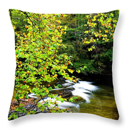 Cherry Falls Throw Pillow featuring the photograph Cherry Falls Elk River by Thomas R Fletcher