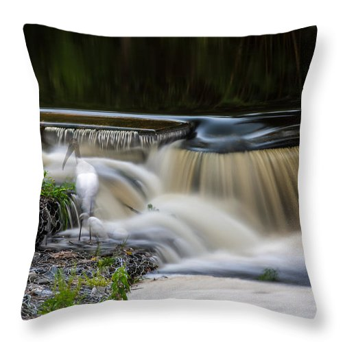 Throw Pillow featuring the photograph 5 Seconds by Rich Franco