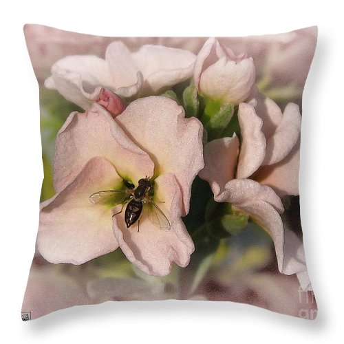 Mccombie Throw Pillow featuring the painting Single Peach Stocks From The Vintage Mix by J McCombie