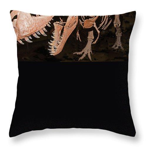 Nature Throw Pillow featuring the photograph Tyrannosaurus Rex by Millard H Sharp