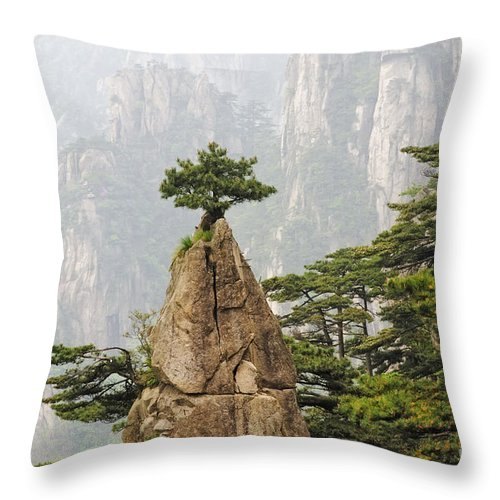 Asia Throw Pillow featuring the photograph Chinese White Pine On Mt. Huangshan by John Shaw