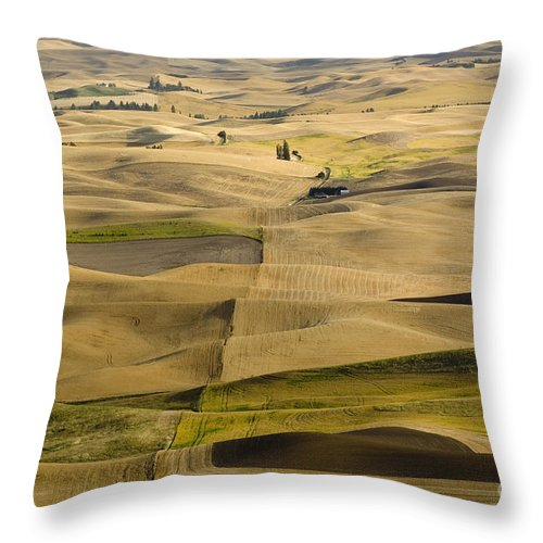 Field Throw Pillow featuring the photograph Farm Fields by John Shaw