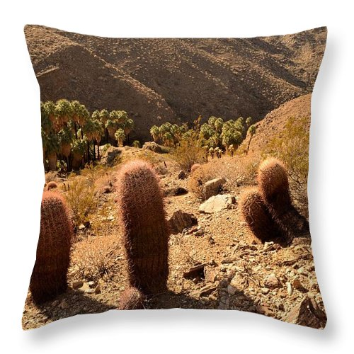 Indian Canyons Throw Pillow featuring the photograph Indian Canyons by Yinguo Huang