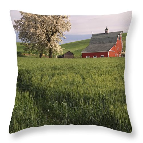 Red Barn Throw Pillow featuring the photograph Red Barn by John Shaw