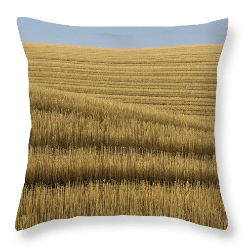 Farm Throw Pillow featuring the photograph Tracks In Field by John Shaw