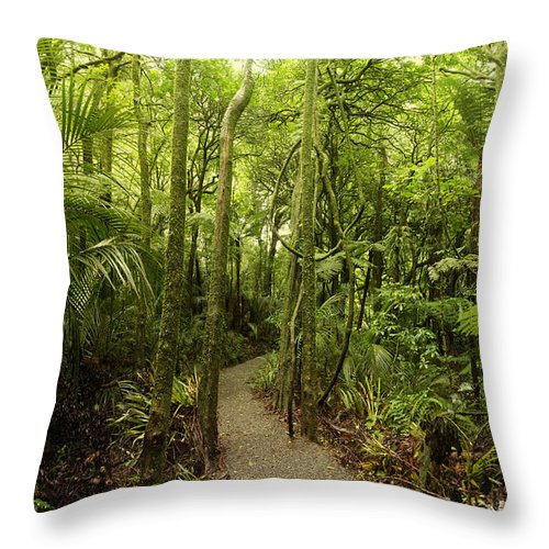 Jungle Throw Pillow featuring the photograph Walking Trail by Les Cunliffe