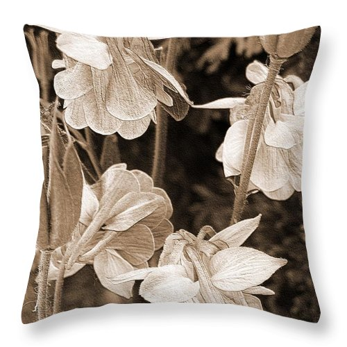Double Columbine Throw Pillow featuring the photograph Double Columbine Named Light Blue by J McCombie