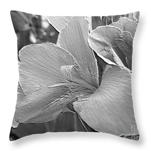 Canna Lily Throw Pillow featuring the digital art Dwarf Canna Lily Named Corsica by J McCombie