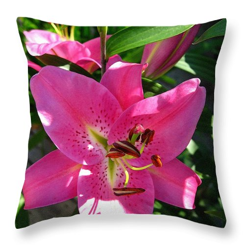 Dwarf Oriental Lily Throw Pillow featuring the painting Dwarf Oriental Lily Named Farolito by J McCombie