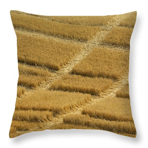 Tracks Throw Pillow featuring the photograph Tracks In Field by John Shaw