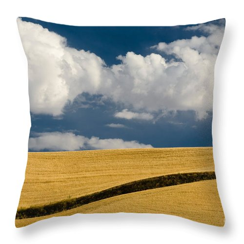 Cloud Throw Pillow featuring the photograph Farm Field by John Shaw