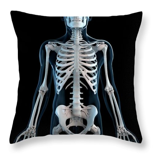 Physiology Throw Pillow featuring the digital art Human Skeleton, Artwork by Sciepro