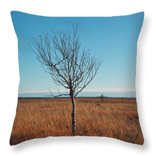 Lehto Throw Pillow featuring the photograph Martimoaapa by Jouko Lehto