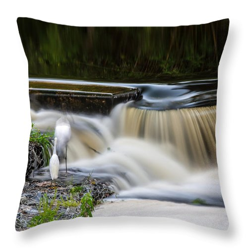 Throw Pillow featuring the photograph 8 Seconds by Rich Franco