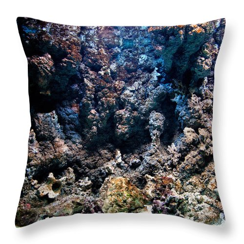 Fish Throw Pillow featuring the photograph Underwater Life by Michal Bednarek