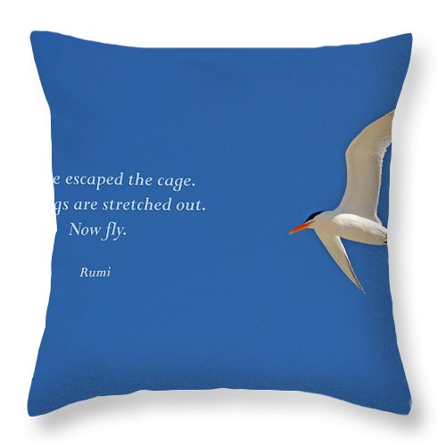 Rumi Throw Pillow featuring the photograph 84- Rumi by Joseph Keane