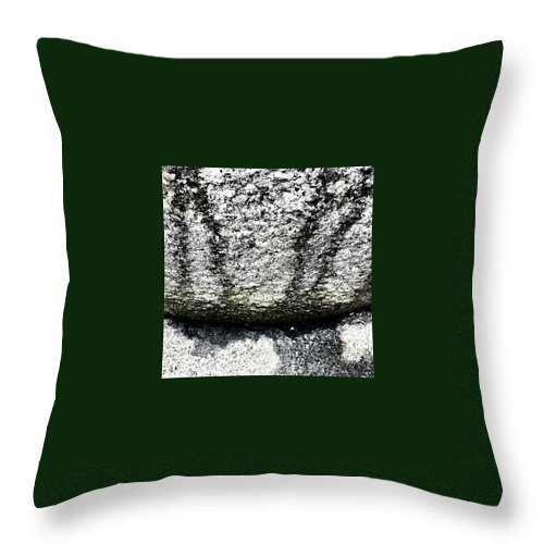 Beautiful Throw Pillow featuring the photograph Textured 2 by J Love