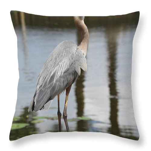 Gbh Throw Pillow featuring the photograph Great Blue Heron by Ken Keener