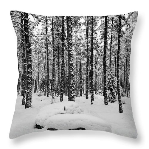 Finland Throw Pillow featuring the photograph Pine Forest Winter by Jouko Lehto
