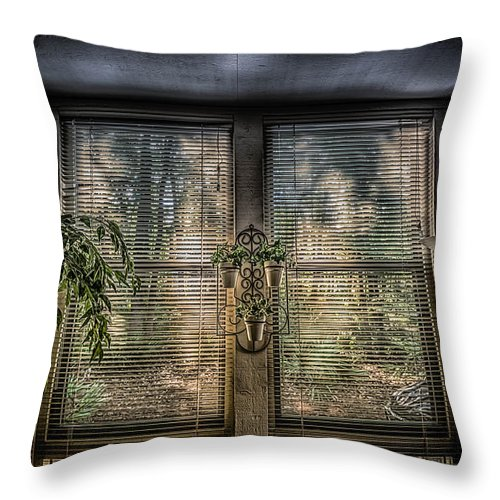 Condo Throw Pillow featuring the photograph A Beautiful Morning by J Riley Johnson