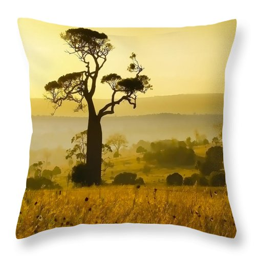 Landscapes Throw Pillow featuring the photograph A Boab Sunrise by Holly Kempe