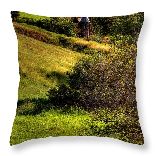 Junk Castle Throw Pillow featuring the photograph A Castle In The Landscape by David Patterson