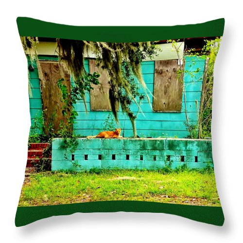 Stray Cats Throw Pillow featuring the photograph A Cat And His Castle by Patricia Greer