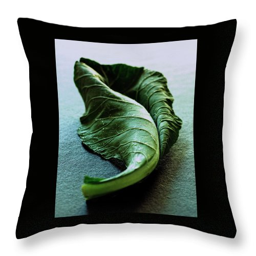 Nobody Throw Pillow featuring the photograph A Collard Leaf by Romulo Yanes