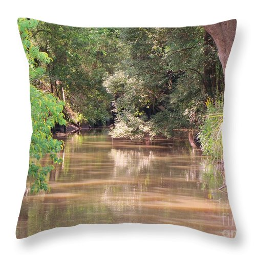Creek Throw Pillow featuring the photograph A Creek by Michelle Powell