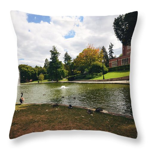 Mirror Lake Throw Pillow featuring the photograph A Day At Mirror Lake by Rachel Barrett