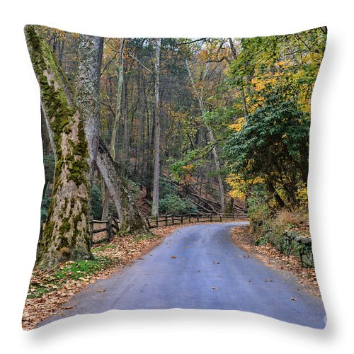 Paul Ward Throw Pillow featuring the photograph A Drive In The Country by Paul Ward
