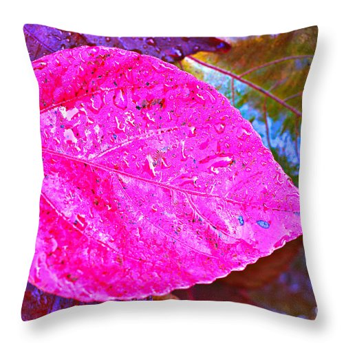 Fall Throw Pillow featuring the photograph A Fall Leaf by Gary Richards