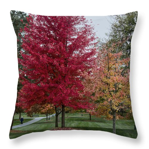 Autumn Color Throw Pillow featuring the photograph A Fall Stroll by Alan Toepfer