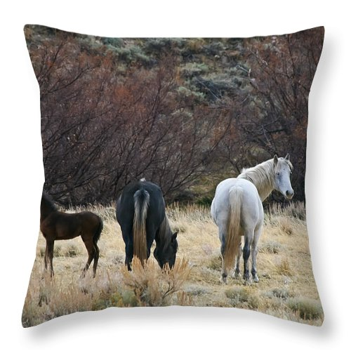 Horizontal Throw Pillow featuring the photograph A Family Of Three - Wild Horses - Green Mountain - Wyoming by Diane Mintle