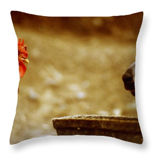 Philippines Throw Pillow featuring the photograph A First Communication? by Joe Connors
