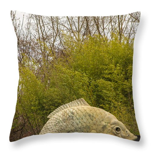 Fish Throw Pillow featuring the photograph A Fish Out Of Water by Calazone's Flics