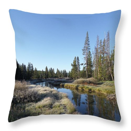 Blue Throw Pillow featuring the photograph A Frosty Morning Along Obsidian Creek by Frank Madia