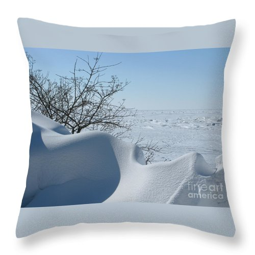 Winter Throw Pillow featuring the photograph A Gentle Beauty by Ann Horn