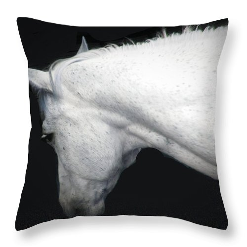 Horse Throw Pillow featuring the photograph A Gentle Spirit by Shannon Story