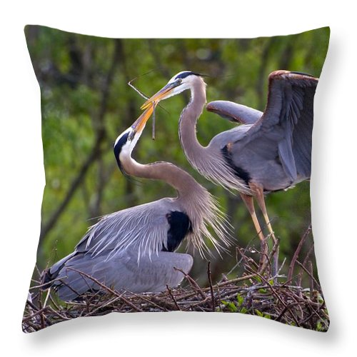Bird Throw Pillow featuring the photograph A Gift For The Nest by Sabrina L Ryan