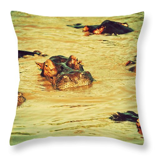 Hippo Throw Pillow featuring the photograph A Group Of Hippos In A River. Tanzania by Michal Bednarek