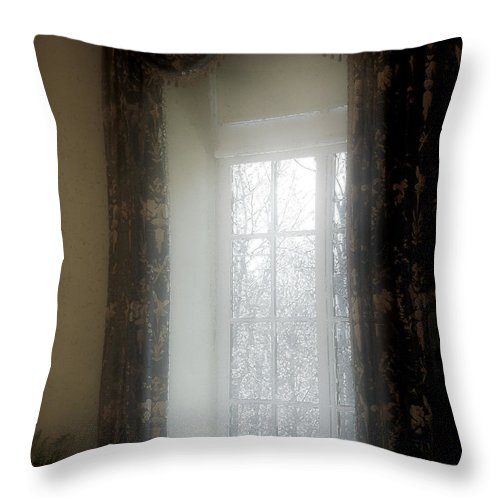 Curtains Throw Pillow featuring the painting A Hazy Shade Of Winter by RC DeWinter
