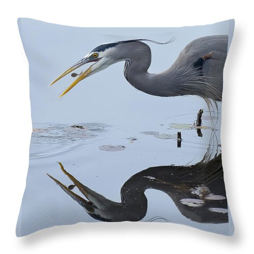 Bill Chambers Throw Pillow featuring the photograph A Hearty Breakfast by Bill Chambers