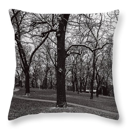 Winter Throw Pillow featuring the photograph A Hint Of Winter by Edward Peterson