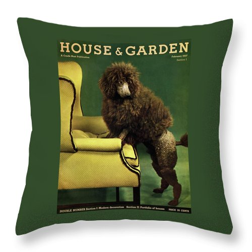 Illustration Throw Pillow featuring the photograph A House And Garden Cover Of A Poodle by Anton Bruehl