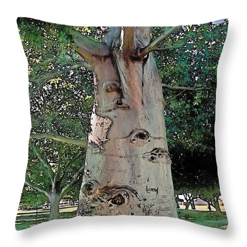 Tranquil Throw Pillow featuring the photograph A Lifetime Of Scars by Terry Reynoldson